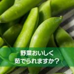 野菜、おいしく茹でられますか?